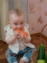 зубки точит очень ловко - сладко-вкусная морковка!