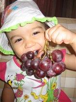 Виноградное настроение
