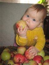 А я яблочки люблю, все покусаю, погрызу...