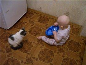 Зря ты, киса,  кушать не стала, всё было вкусно!