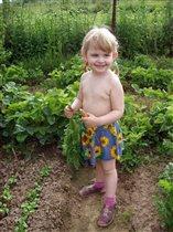 Вика и морковка, или Летом на даче