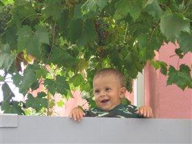 Сережа с виноградом
