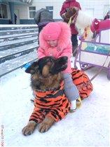 Кто сказал, что езда на собаке это не спорт?!
