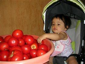 lyubim pomidori