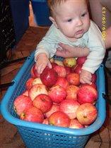 Вкусненькие яблочки