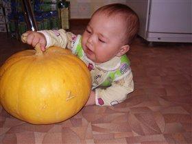 'Это что за чудо овощ?!'