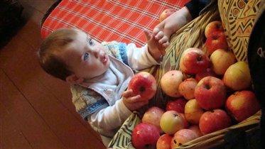 у дедушки на даче самые вкусные яблочки:)