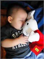 Спят усталые игрушки, дети спят...