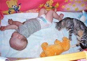 Спят усталые игрушки, кошка, мышка и Никушка