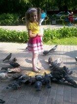 Ой, сколько голубей!!!!!!!!!