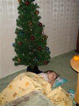 Сон в Новый год