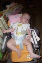 уснула в стуле