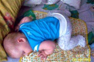 спящая лягушенка