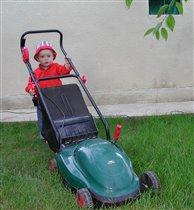 Пора косить газон!