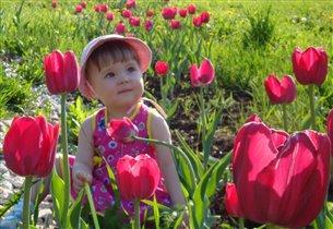 Аленький цветочек :)