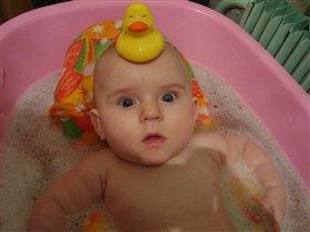 Ого! Мама, в ванной даже настоящие утки водятся!