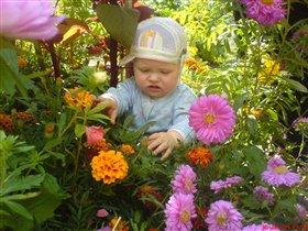 Идите ко мне мои цветочки.