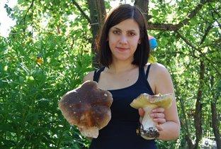 Отдыхаю и собираю вооот такие грибы...на даче!