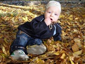 Осенние листочки юного натуралиста
