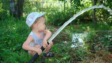 Юный садовод
