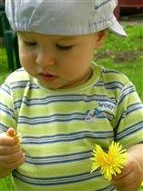 золотой цветочек!
