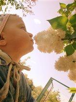 А этот цветочок как пахнет?...