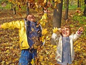 Осенний салют