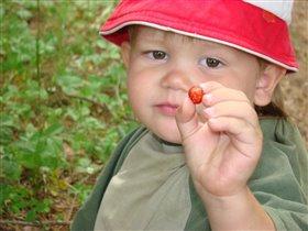 Моя перва ягода из лесу(сам собирал)