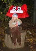 Под таким зонтом не страшен даже ливень!