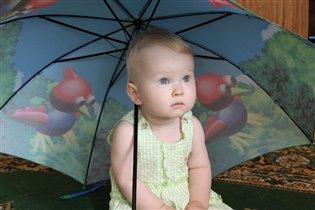 Уже 24 июля, а дождя нет и нет....