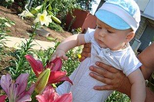 Юнный садовод
