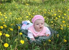 Удивление на цветочной полянке