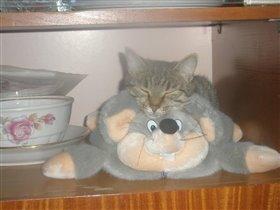 Поиграем в кошки-мышки!