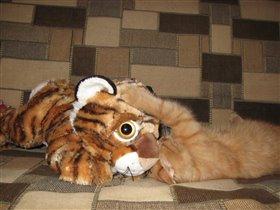 котик с тигром любовь)))))
