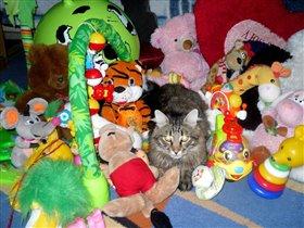 Кот в стране игрушек