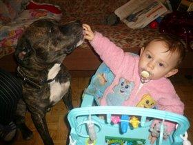 Нельсон пёс мой ты что хочешь мою соску пососать?