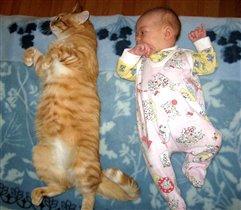 Наша крошка ростом с кошку)