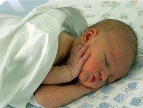 Новорожденный философ