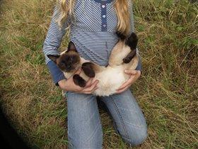 Мария и кошачья Мама тайский бобтейл Люська