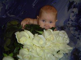 миллион белых роз