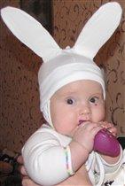 Современные зайчики едят не только морковку!