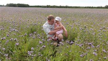 Гречневое поле... с папочкой