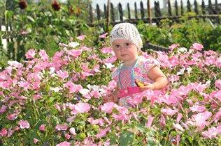 Бабушкины цветы самые красивые