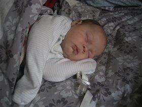 Маркуська сладко спит