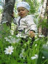 Хорошо гулять в лесочке