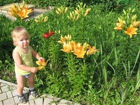 Хороши в саду у нас цветочки...