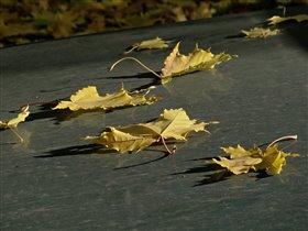 Осень на капоте