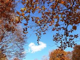 Под небом голубым есть город золотой...