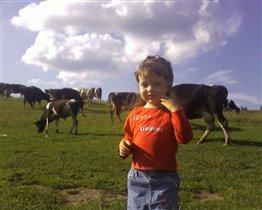 Катя и коровки.