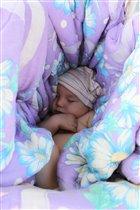 Сладок сон в гамаке...